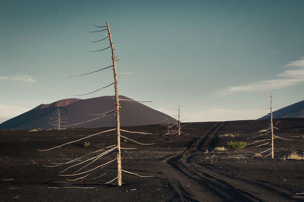 Erupcja z 1975 roku zasypała popiołem kwitnący niegdyś teren. Już od ponad 40 lat to miejsce przypomina spaloną pustynię