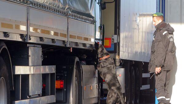 Kynolog z psem służbowym sprawdza samochody na przejściu granicznym Kozłowicze w obwodzie brzeskim - Sputnik Polska