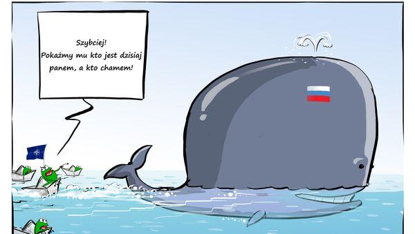 Rosyjski Moby Dick - Sputnik Polska