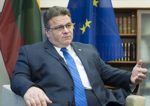 Minister spraw zagranicznych Litwy Linas Linkevicius