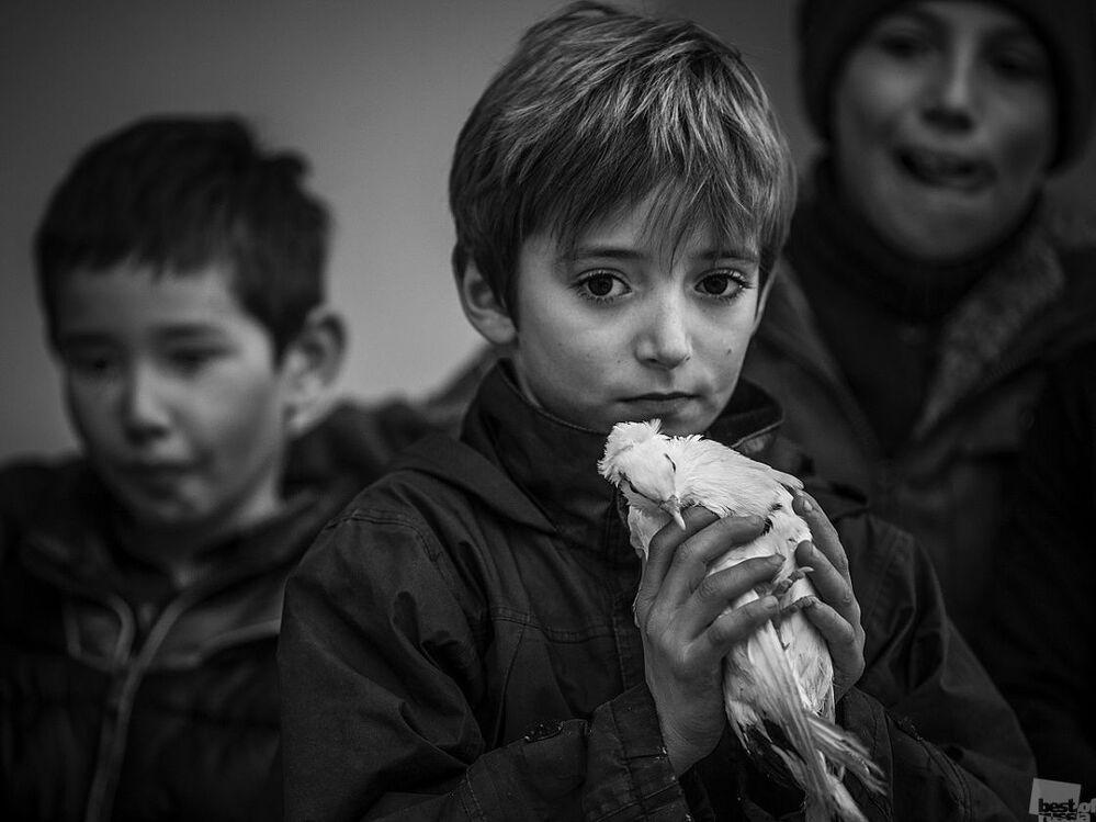 Zdjęcie Chłopczyk z gołębiem. Autor: Andriej Ustinowicz. Kategoria: Ludzie. Wydarzenia. Codzienne życie