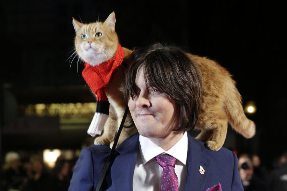 """Kot Bob zyskał popularność dzięki swojemu właścicielowi, pisarzowi Jamesowi Bowenowi. Jego książki """"Uliczny kot imieniem Bob"""" i """"Świat oczami kota Boba"""" napisane we współautorstwie z Garrym Jenkinsem stały się międzynarodowymi bestsellerami""""."""