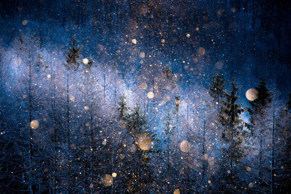 Autor: Masayasu Sakuma. Kategoria otwarta: Natura.