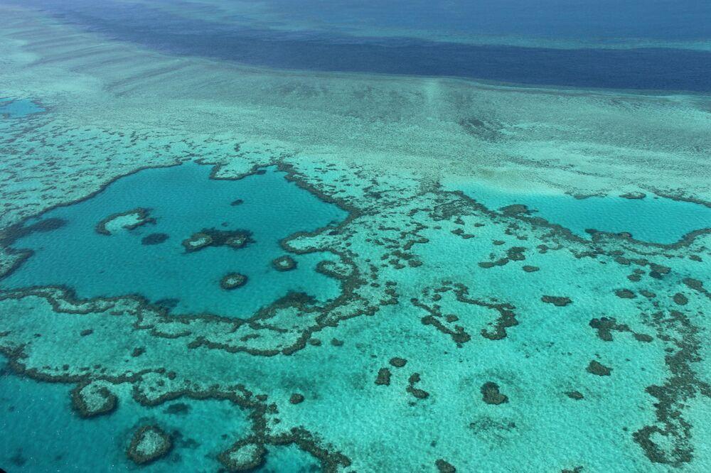 Zdaniem naukowców same zmniejszenie poziomu zanieczyszczenia lub połowu ryb, nie poprawi sytuacji, ponieważ główną przyczyną wymierania koralowców jest podniesienie temperatury wody w oceanie.