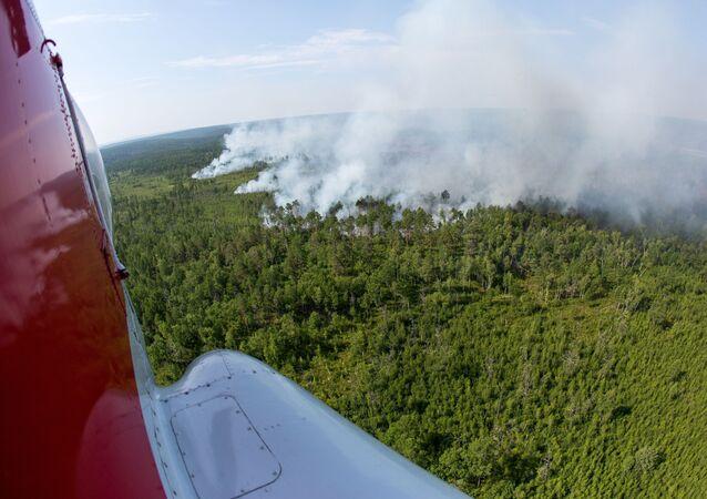Pożary w obwodzie amurskim