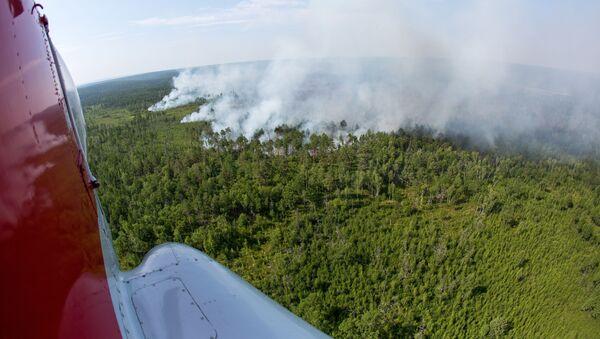 Pożary w obwodzie amurskim - Sputnik Polska