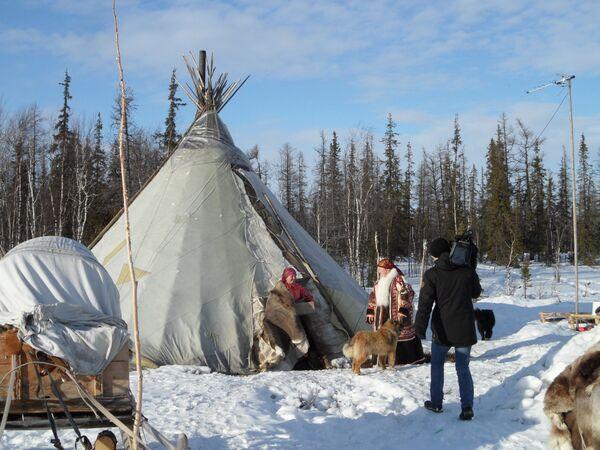 Osada składa się z trzech czumów – namiotów, w których mieszkają trzy spokrewnione rodziny. - Sputnik Polska