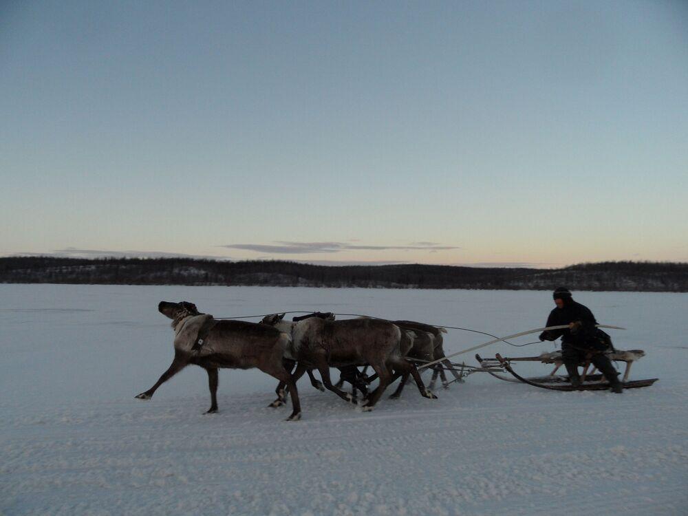 24-25 kwietnia rodziny ruszą w stronę Uralu, 200 kilometrów od Salecharda.