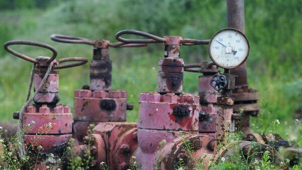 Złoże gazy łupkowego. Zdjęcie archiwalne - Sputnik Polska