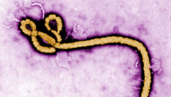 Przywódca Donieckiej Republiki Ludowej Aleksander Zacharczenko - Sputnik Polska