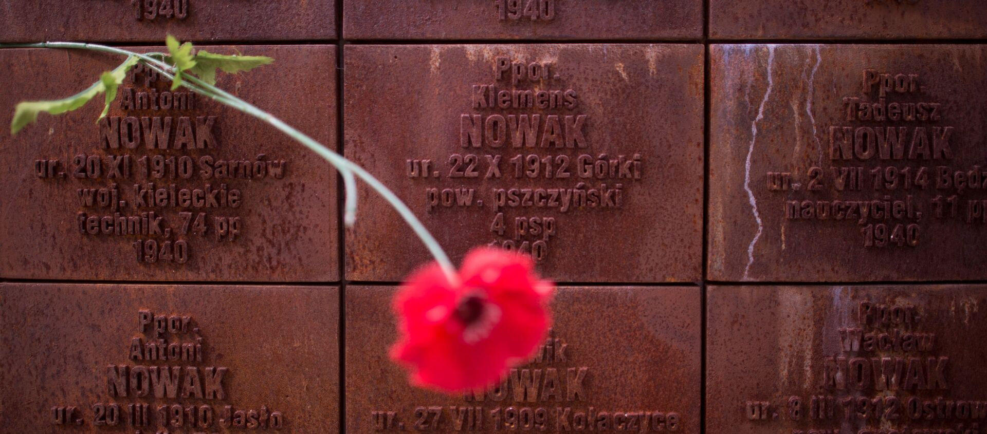 Kompleks memorialny Katyń - Sputnik Polska, 1920, 13.04.2021