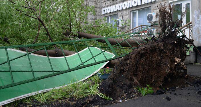 Moskwa po przejściu huraganu, 29.05.2017