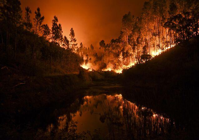 Pożary lasów w Portugalii
