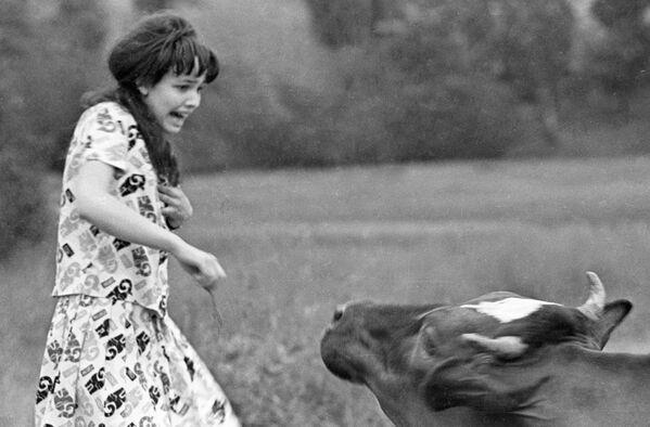 Dziewczyna ucieka od krowy - Sputnik Polska