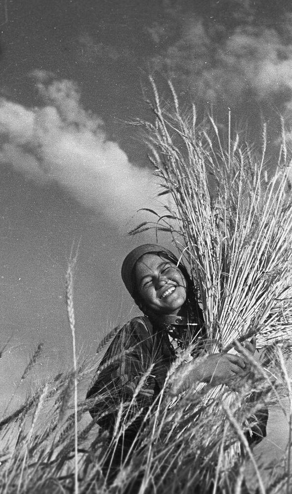 Żniwa w Turkmeńskiej SRR, rok 1939