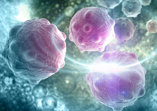 Komputerowy model komórek rakowych