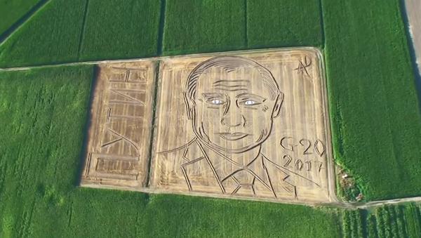 Putin z lotu ptaka - Sputnik Polska