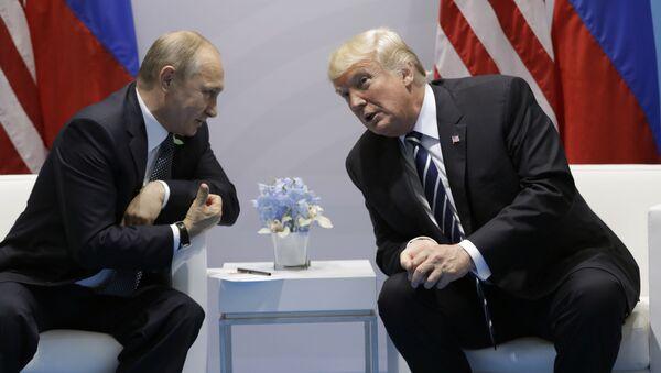 Spotkanie prezydentów Rosji i USA Władimira Putina i Donalda Trumpa na marginesie szczytu G20 w Hamburgu - Sputnik Polska