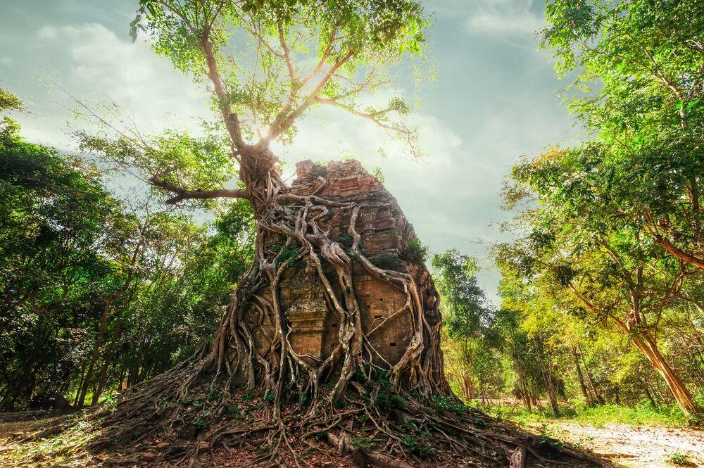 Kompleks archeologiczny Sambor Prey Kuk w Kambodży