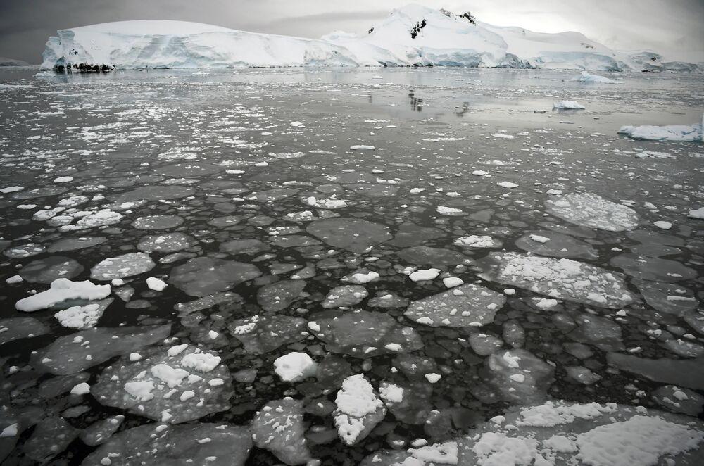 Pływający lód na powierzchni morza na Półwyspie Antarktycznym