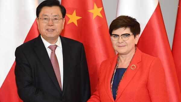 Beata Szydło i Zhang Dejiang - Sputnik Polska