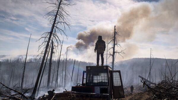 Pracownik agencji rządowej Awialesochrona Buriacji w czasie likwidowania pożaru w rejonu kabańskim - Sputnik Polska