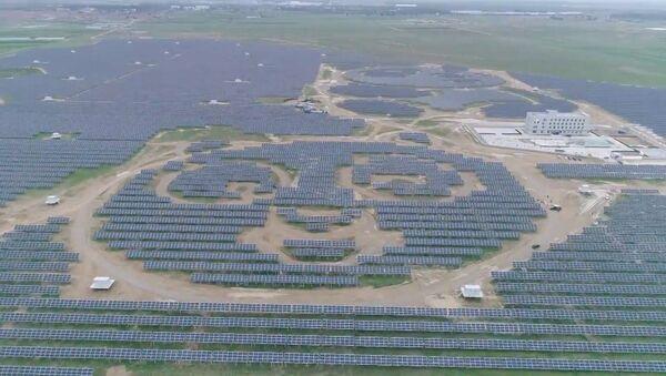 Elektrownia słoneczna w kształcie pandy - Sputnik Polska
