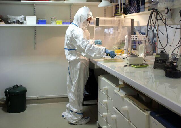 Badanie DNA kotów w laboratorium