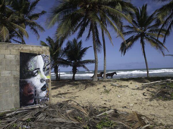 Portret kobiety australijskiego ulicznego artysty pracującego pod pseudonimem Rone - Sputnik Polska