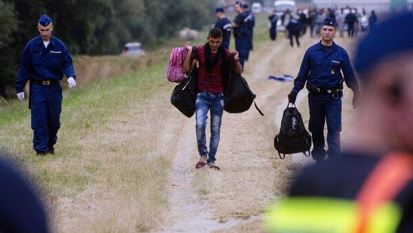 Imigranci na granicy węgiersko-serbskiej - Sputnik Polska