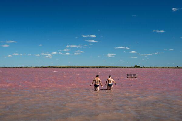 Malinowe jezioro w Kraju Ałtajskim - Sputnik Polska