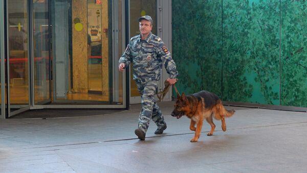 Kynolog z psem w centrum handlowym AFIMALL City w Moskwie - Sputnik Polska