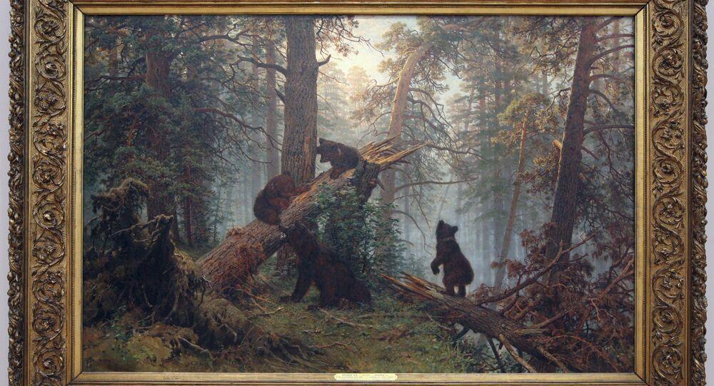 Poranek w sosnowym lesie