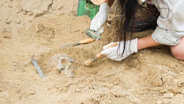 Archeolog - Sputnik Polska