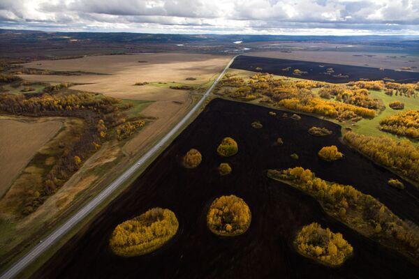 Federalna droga R255 Sybir i pola wzdłuż drogi w okolicy miasta Kemerowo - Sputnik Polska