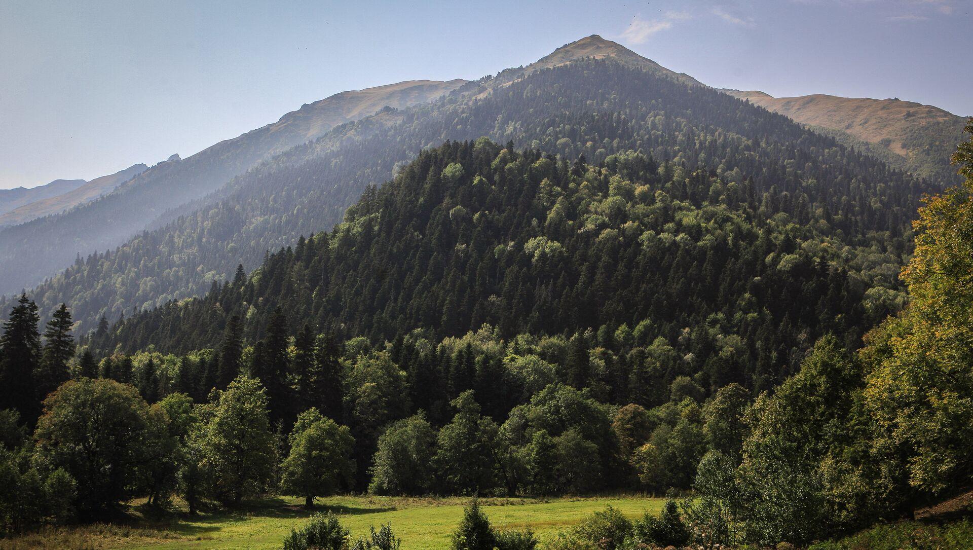 Góry na terenie wschodniej części Kaukaskiego Rezerwatu Biosfery (Republika Karaczajo-Czerkiesji). - Sputnik Polska, 1920, 07.06.2021