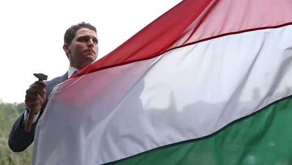 Mężczyzna na tle flagi Węgier - Sputnik Polska