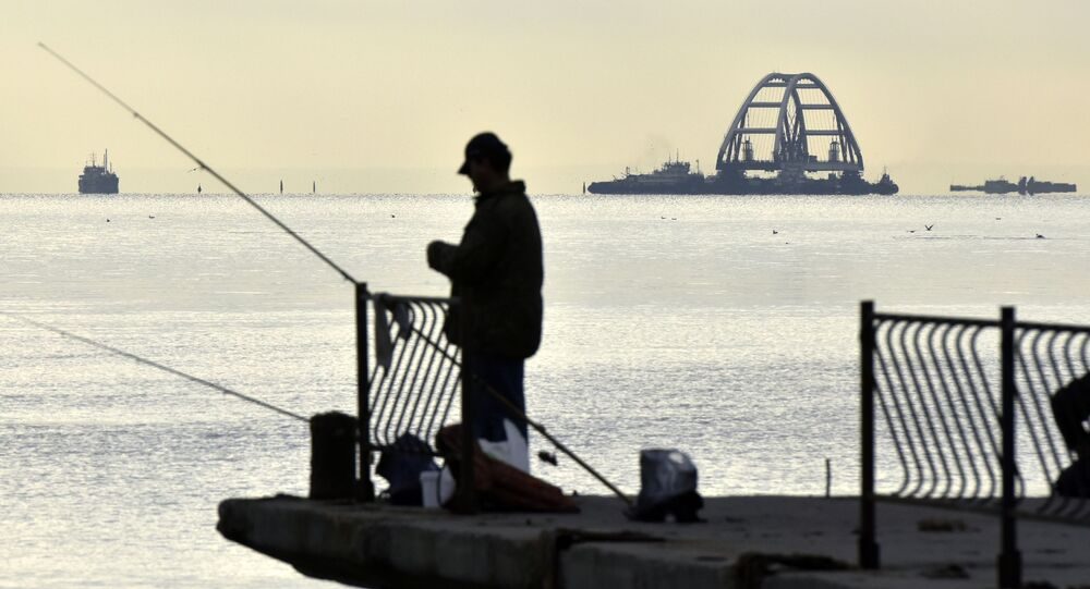 Widok na Krymski Most w Zatoce Kerczeńskiej