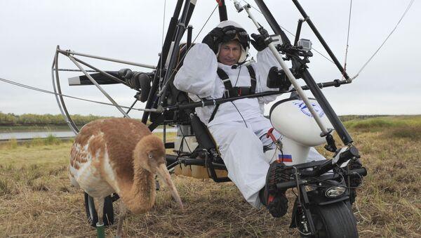 Władimir Putin wziął udział w ekologicznym projekcie Lot nadziei - Sputnik Polska
