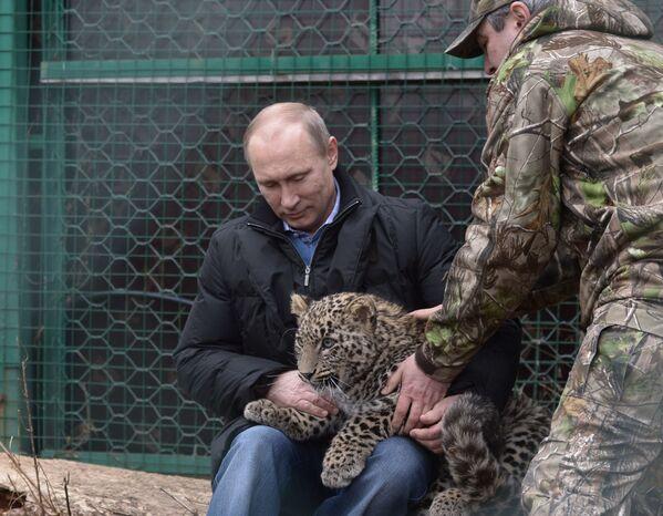 Władimir Putin w Soczi - Sputnik Polska
