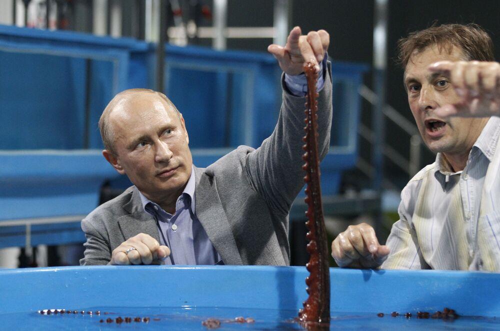 Władimir Putin we Władywostoku