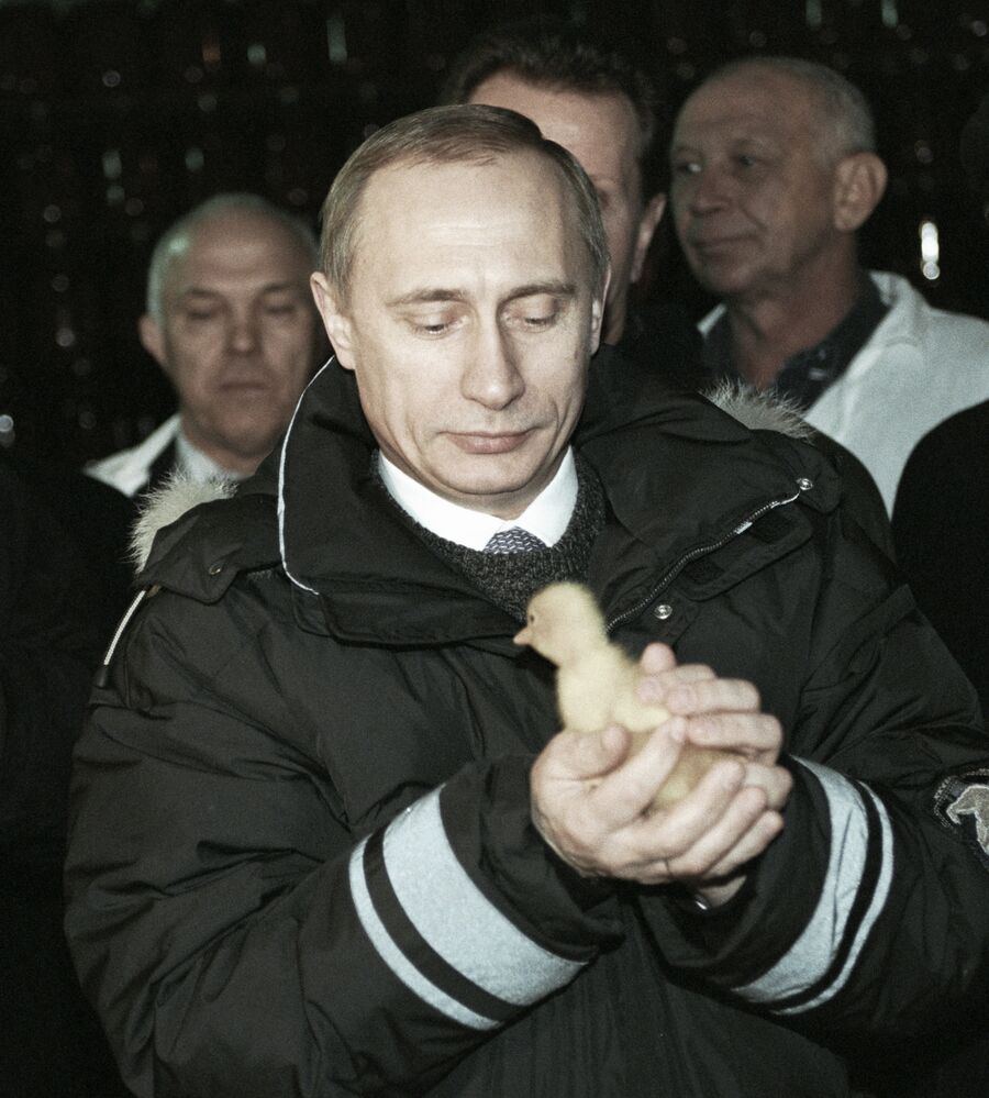 Władimir Putin z kurczątkiem, 2000 rok