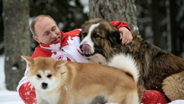 Władimir Putin z psami Buffy i Yume - Sputnik Polska