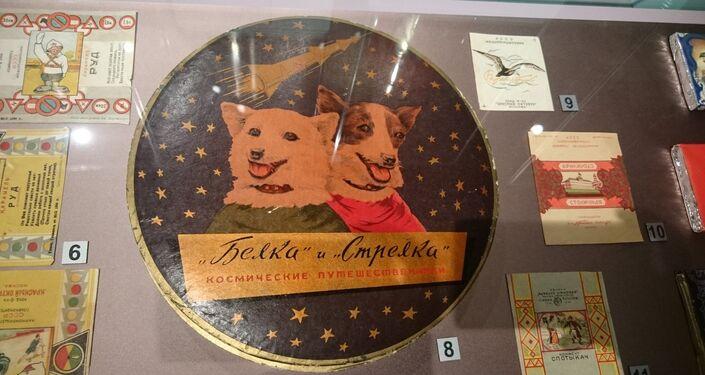 """Nowa ekspozycja w Muzeum Historii Czekolady i Kakao """"Róża Einema"""