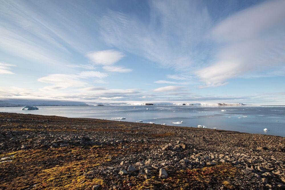 Lodowce wyspy Bruce'a wchodzącej w skład archipelagu Ziemia Franciszka Józefa.