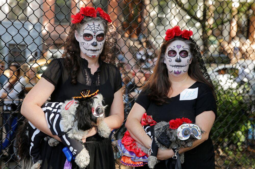 Psy w kostiumach na psiej paradzie Halloween