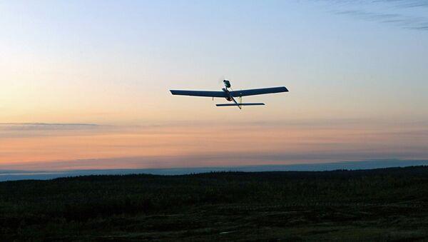Dron - Sputnik Polska