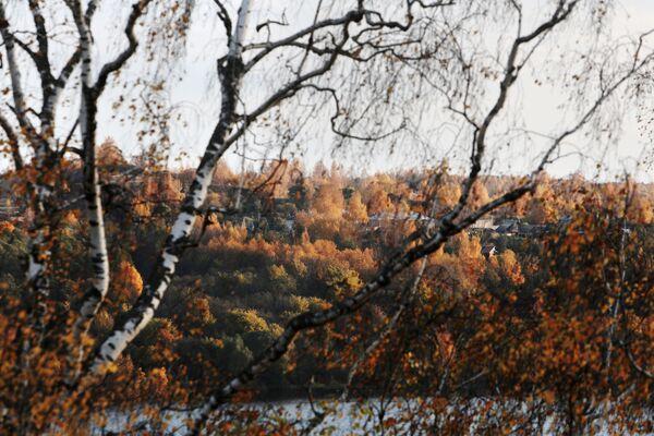 Jesień nad Wołgą w mieście Plos - Sputnik Polska
