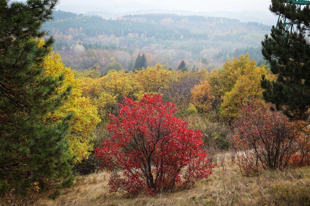 Jesień w Parku Narodowym Kisłowodzki.