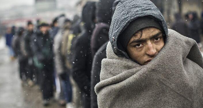 Alejandro Martinez Velez, Uchodźcy w Belgradzie